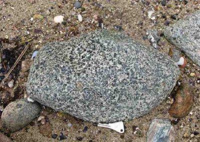 1, Vadum Strand. Dk. Een steen met vlekken die voor een groot deel lijken te bestaan uit oeraliet. Ook de reactieranden zijn duidelijk zichtbaar.