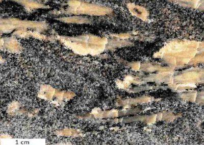 10. Detail van 9. Bovenste helft. - De langgerekte porfiroblasten hebben een kern van bruinachtige, vezelige sillimaniet, omgeven door een mengsel van kwarts en wat veldspaat.