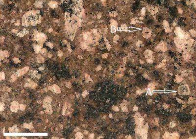 10. Detail van 9. Pijl A toont een lichtgekleurde rand rond een plagioklaas. Pijl B toont zwarte mineralen rond een veldspaat.
