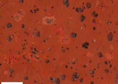 3. Rödö kwartsporfier. Rots. De kaliveldspaten verschillen in kleur nawelijks van de grondmassa.