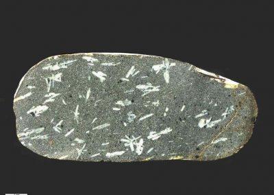 1. NW Doleriet. Sarup Havn. Als. Dk De fijnkorrelige ophitische grondmassa is duidelijk zichtbaar. Een aantal plagioklazen vormt een duidelijke lineaire ligging.