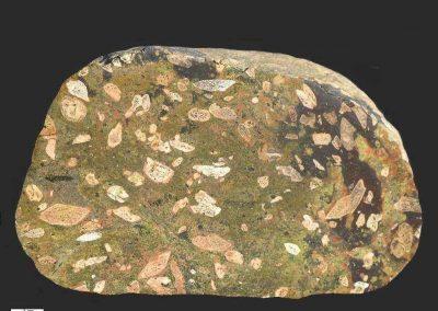 1. Rhombenporfier. Autometamorf. Gyldendal. Dit soort stenen bevat veel epidoot die is ontstaan door omzettingen vanwege grote ouderdom