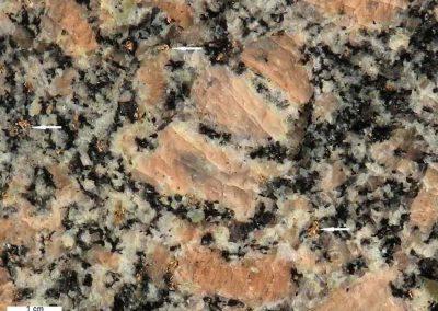 5. Detail van 4. De pijlen tonen titaniet. behalve veel wirtte, bevat de steen ook groenachtige plagioklaas.