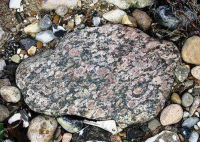 7. Filipstadgraniet. Ny Molle. Limfjord Dk. Op de zwarte grondmassa zijn de plagioklaasringen goed zichtbaar.