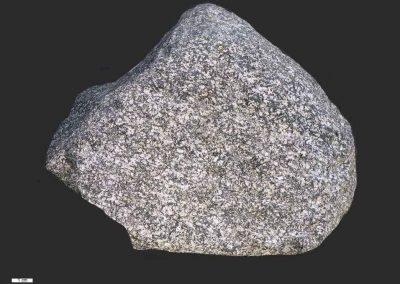 3. Hoornblende Essexiet. De Westereen Een steen met een lichtgekleurde plagioklaasrijke grondmassa en glinsterende zwarte hoornblendenaaldjes.